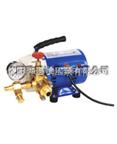 微型电动试压泵
