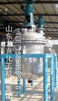 高压反应釜/电加热反应釜,山东龙兴