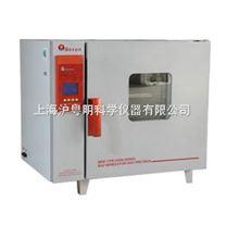 博迅鼓风干燥箱 300℃电热鼓风烘箱 BGZ-76干燥箱