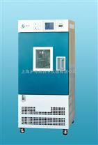 GDHS-2025B高低温湿热实验箱.上海精宏高低温实验箱