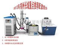 DL-400circulate cooler DL-400带循环小型冷却器 为旋蒸降温