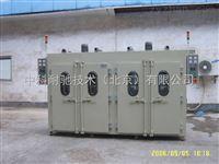ZNG-101A型立式热风干燥箱